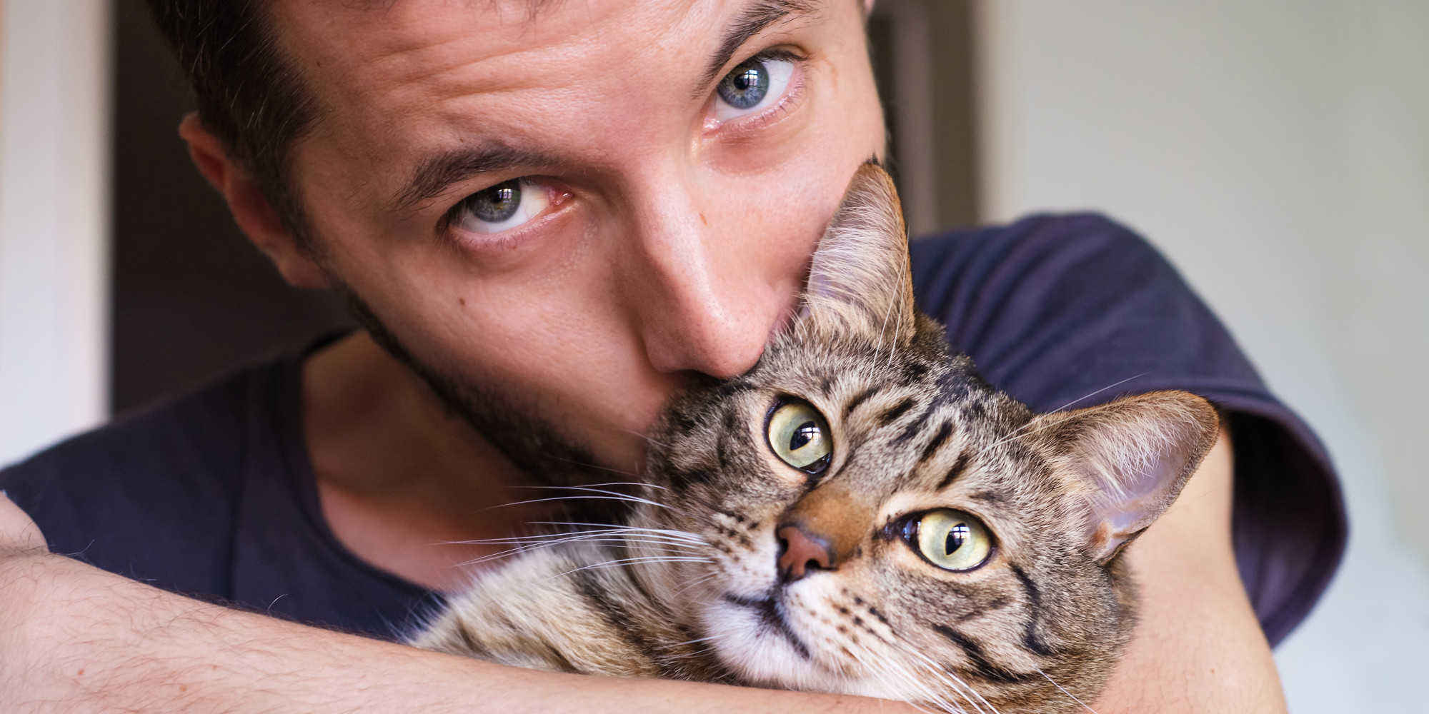 Meow Monday: The Benefits of Owning a Cat | LIFE SAVER TAILS