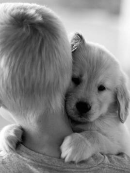cute-dogs-hugging-humans-99.jpg